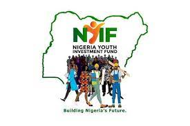 Nigeria Youth Investment Fund-